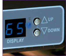 Digital Thermostat with LED Display