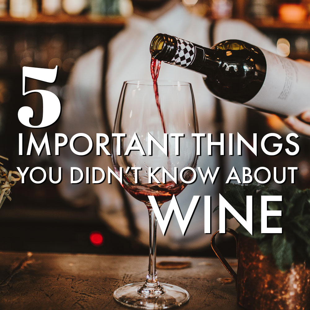 5 Important Things You Didnt Know About Wine