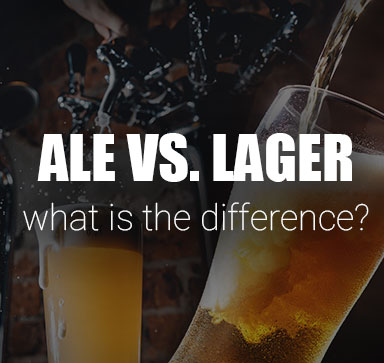 Beer Basics - What Is The Difference Between Ale vs. Lager?