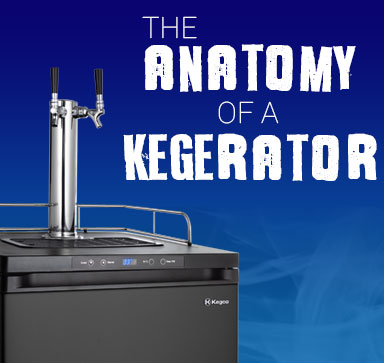 The Anatomy Of A Kegerator - How Does A Kegerator Work?