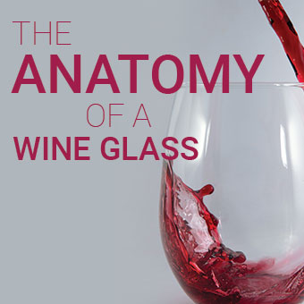 The Anatomy of a Wine Glass - What You Need to Know Before You Buy